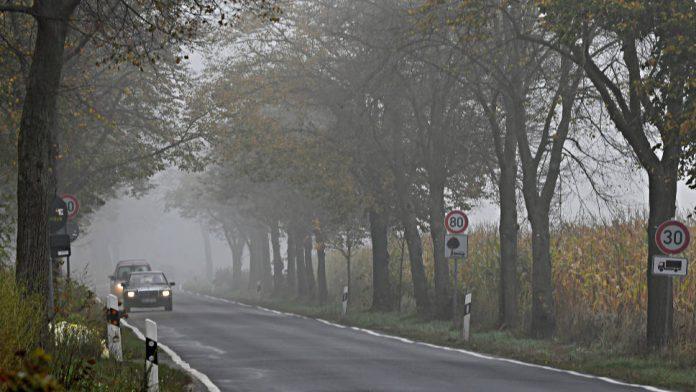 Derzeit kommt es häufig zu Nebel auf den Straßen.