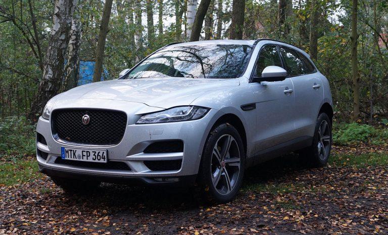 Jaguar F-Pace: Junger Beau mit alten Schrullen