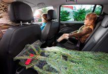 Den Tannenbaum sicher transportieren. Foto: Opel