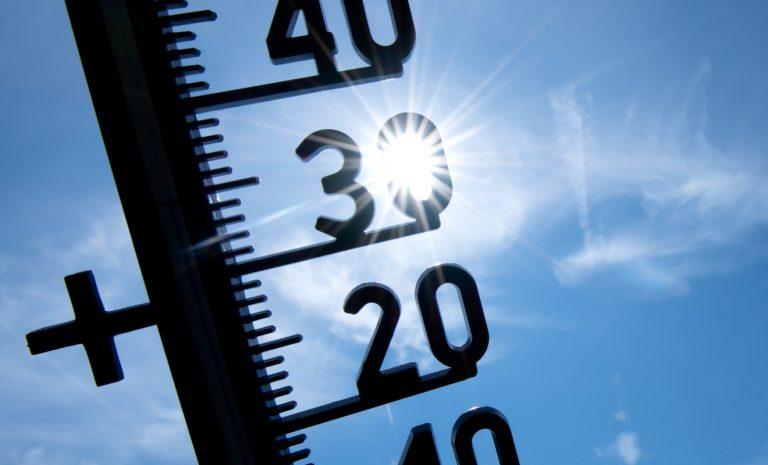 Sommerhitze im Auto: Das hilft gegen hohe Temperaturen