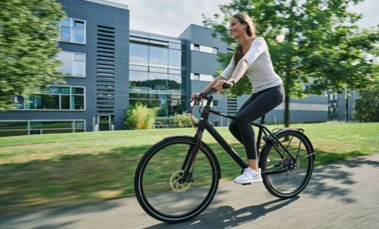 Möve mit smartem E-Bike E-Fly Airy