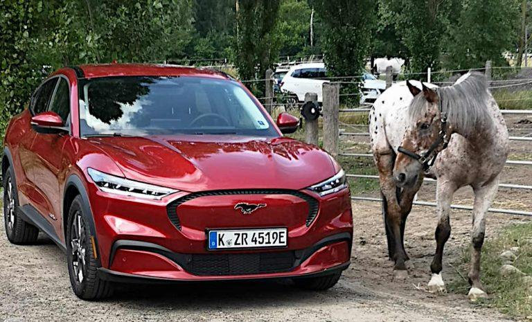 Ford Mustang Mach-E: Ohne Reichweitenangst auf Tour