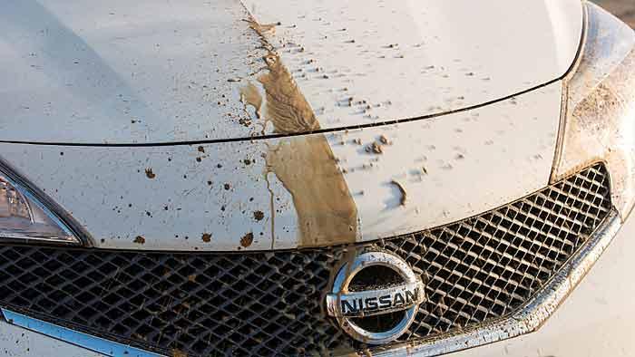 Nissan reinigt selbstständig.