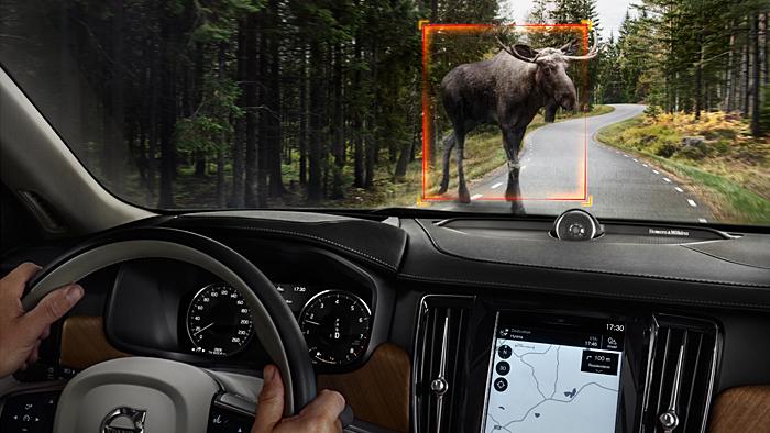Das City Safety-System von Volvo erkennt nun auch große Tiere.